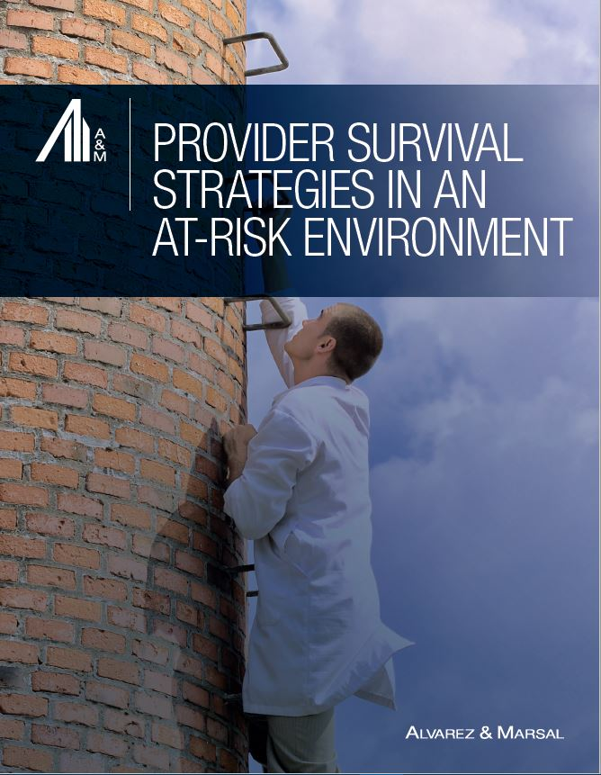Healthcare Consulting Firms | Provider Survival Strategies in an At-Risk Environment